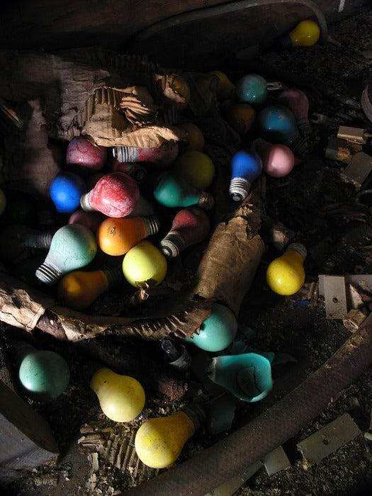 Image of Rainbow Bulbs