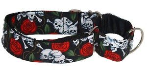 Image of Beastie Skulls Martingale Collar in the category  on Uncommon Paws.