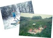 Image of Winter Horse & Autumn Horse