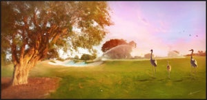 Image of Par 3 | Landscapes