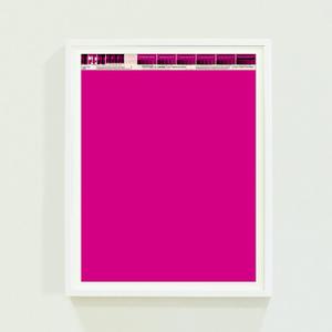 Image of PANTONE® Letraset Posters × Fuchsias
