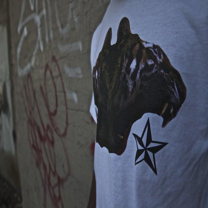 Image of Panthera