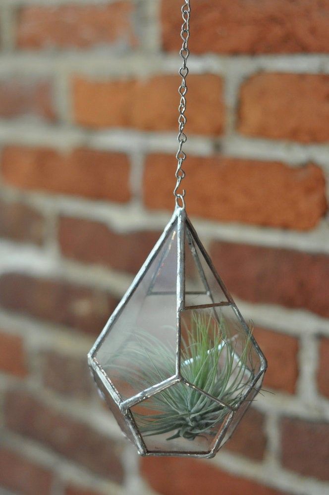 Image of Teardrop Terrarium Kit, small