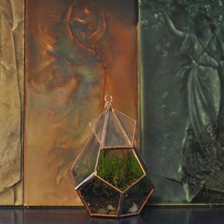 Image of Teardrop Terrarium Kit, small hinged
