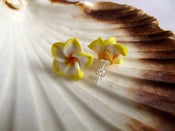 Image of Yellow flower stud earrings