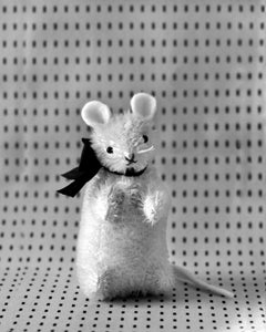 Image of SAM THE MOUSE