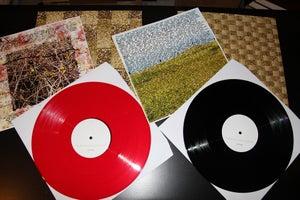 Image of Point Reyes - Golden LP