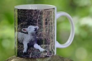 Image of Kathleen Lamb Mug