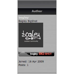 Image of Bogley BigShots - Annual (W/ FREE Sticker)