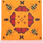 Image of Orange Kaleidoscope with Butterflies 21 x 21