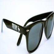 Image of Falus Sunny's Black