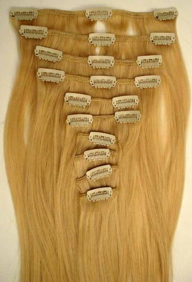 Image of Virgin Indian Clip-in Hair Extensions