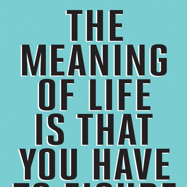 Image of The meaning of life