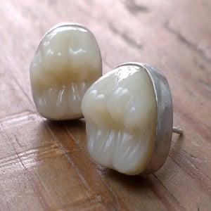 Image of MOLAR earrings