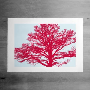 Image of The Roost 3 print