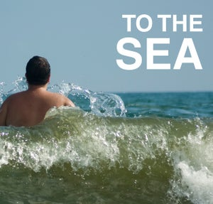 Image of To the Sea