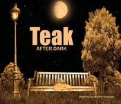 Image of Teak After Dark - CD of Remixes by Martin Kennedy