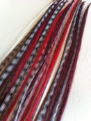 Image of Red Feather Extension Mix