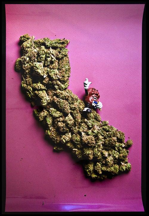 Image of California Dreamin'