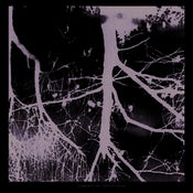 Image of Chronocide/Fifteen Dead - Split