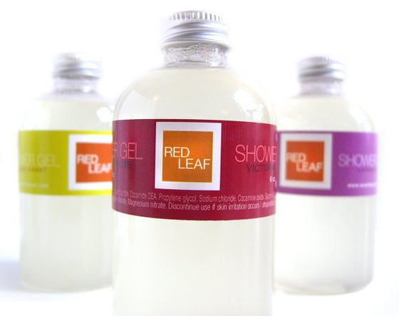 Image of Aloe Vera Body Wash Moisturizing Vegan Shower Gel