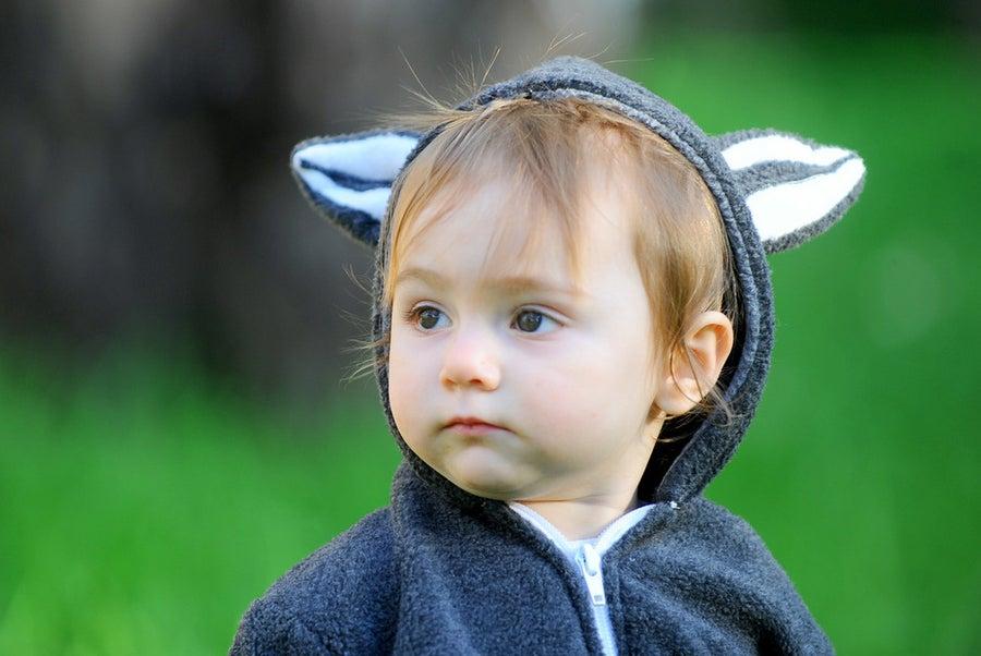 Image of Raccoon Hoodie   קפוצ'ון דביבון