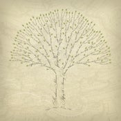 Image of Legacy Family Tree