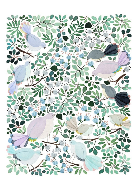 Image of Forest Cuckoo -print