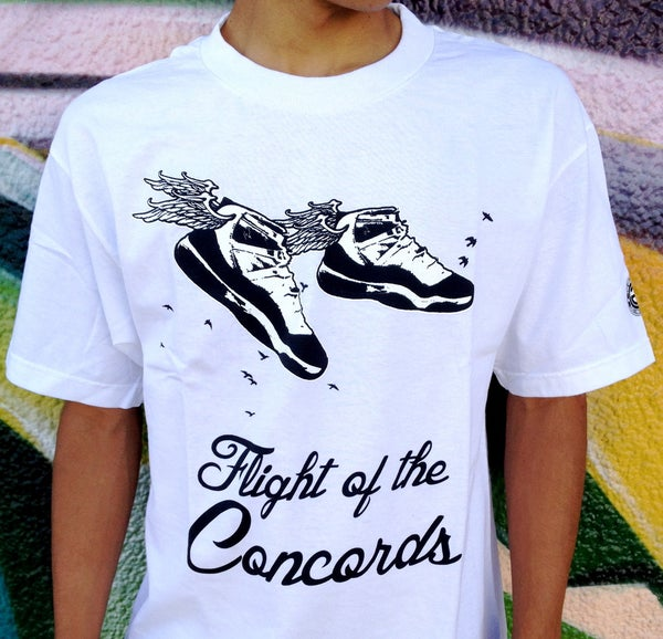 Image of FLIGHT OF THE CONCORDS