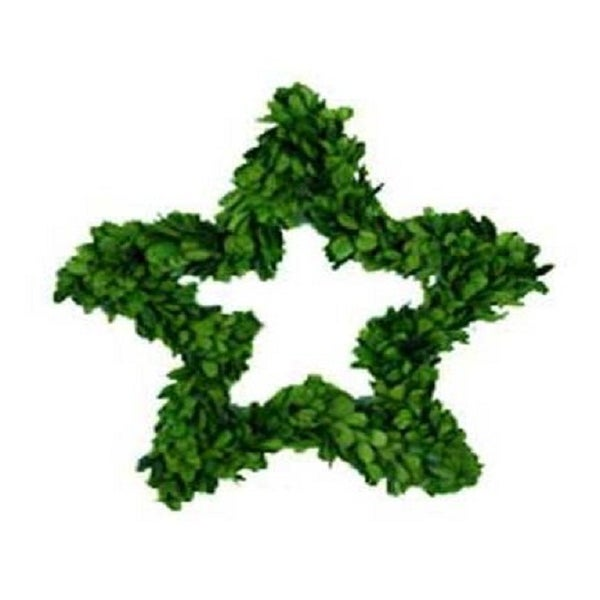 Image of Preserved Boxwood Wreath -- Star 8""