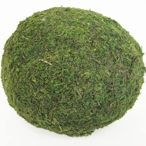 Image of Decorative Green Moss Ball, 6""