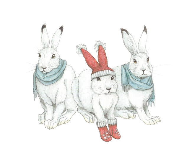 Image of Snowshoe Hares in Winter Wear boxed notecard set