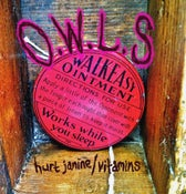 "Image of O.W.L.S limited edition 7"" vinyl - Hurt Janine/Vitamins *pre order*"