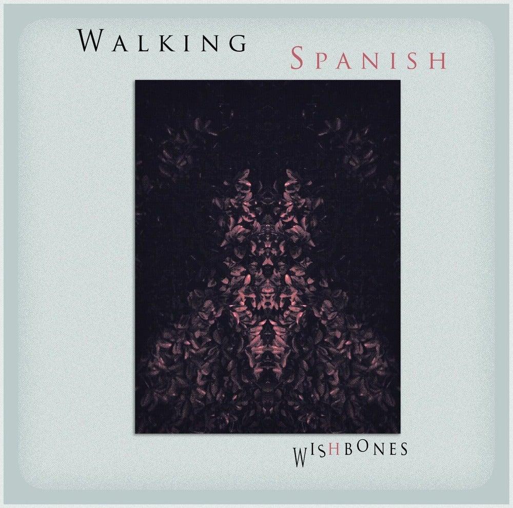 "Image of ""Wishbones"" CD"