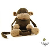 Image of Jerry the Monkey