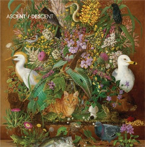 Image of Ascent/Descent Album