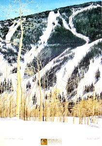 Image of 1999 World Apline Ski Championship