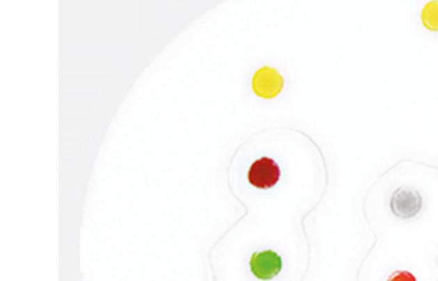 Image of béquillard badge