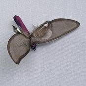 Image of R75  Mini Bug