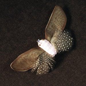 Image of T71  Pink/Brown Bug
