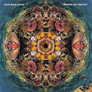 Image of White Bone Rattle - Creature of Curiosity - CD