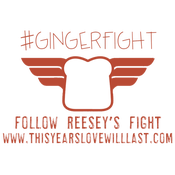 Image of GingerFight T-Shirts --PREORDER