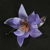 Image of R80  Magnolia