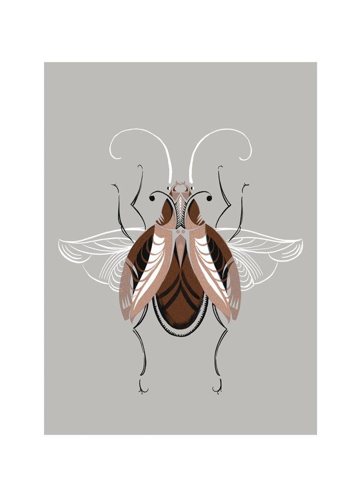 Image of Beetle #6