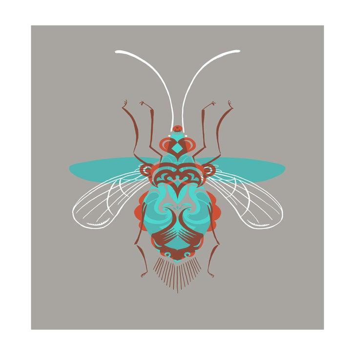 Image of Beetle #3