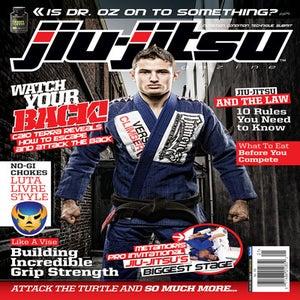 Image of Issue 11 Dec/Jan 2013
