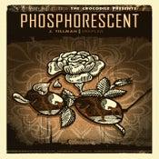 Image of Phosphorescent. Grouplove. J. Tillman. Seattle, 2010.