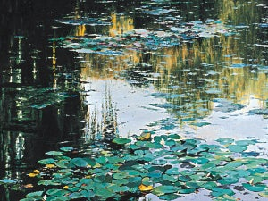 """Image of """"Autumn at Giverny"""" giclee"""
