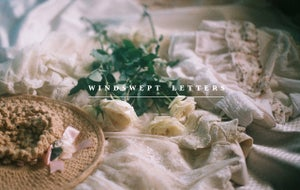 Image of Windswept Letters Limited Edition Postcard Set Cover