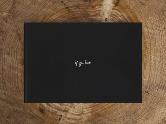 Image of If You Leave Volume II